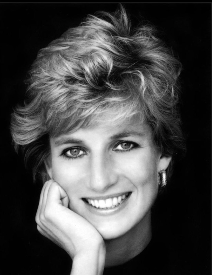 Diana Testimonial img - Diana The Voice of Change